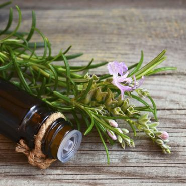 rosemary-essential-oil-glass-dropper-bottle